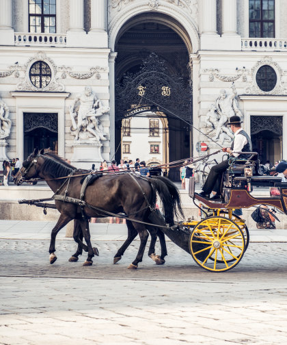 A carriage drawn by two brown horses in front of the Spanish Riding School.
